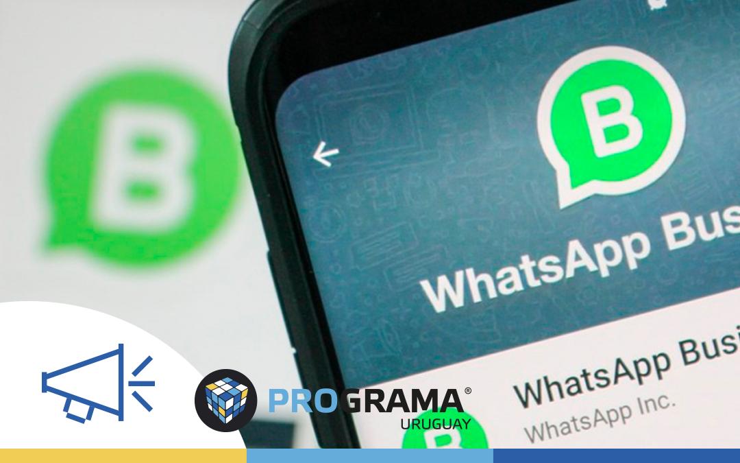 Whatsapp Business, una gran opción para tu empresa